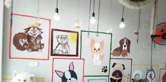 quán cafe thú cưng hà nội