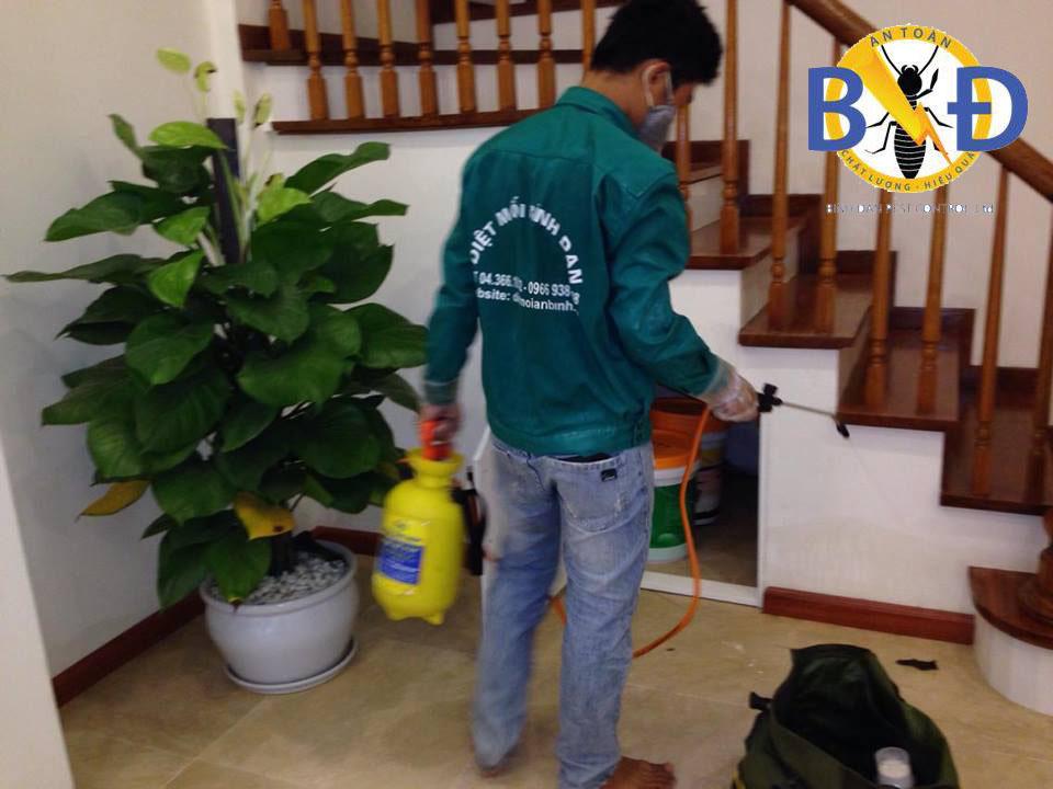 Dịch vụ diệt côn trùng Hà Nội