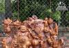 Nguồn Gốc Và Ý Nghĩa Tượng Phật Di Lặc
