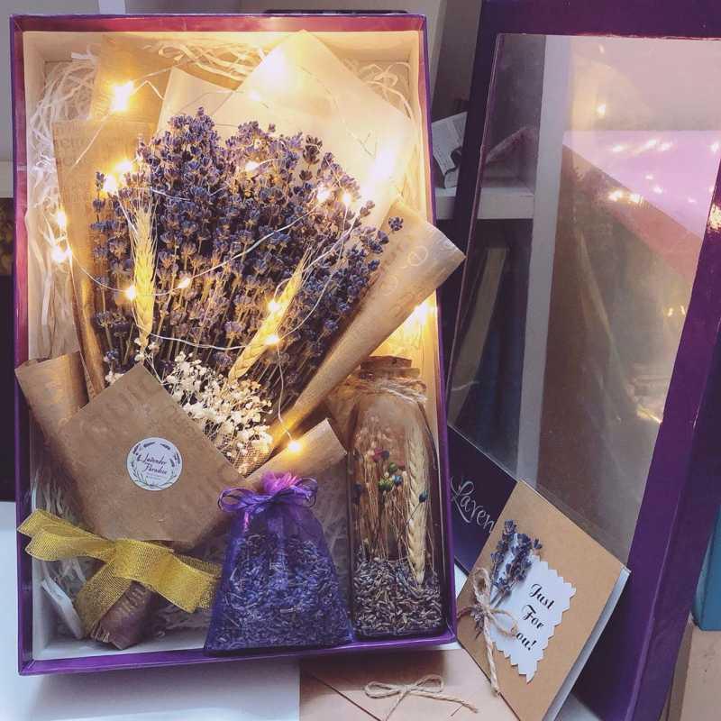 hoa lavender giá rẻ