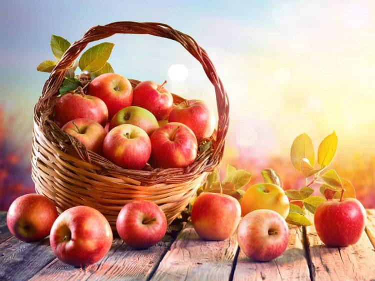 cửa hàng hoa quả sạch hà nội